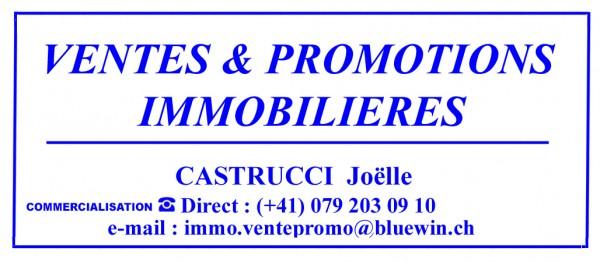 VENTES & PROMOTIONS IMMOBILIÈRES