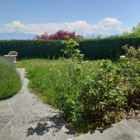 Magnifique maison de 7.5P / 3CHB / 1 Bureau / 2SDB / cheminée / jardin