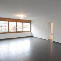 Magnifique et spacieux 4.5 pièces récent dans quartier résidentiel