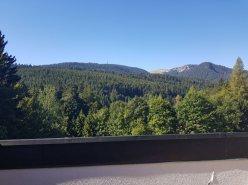 St-Cergue Beau DUPLEX de montagne, au calme, belle vue montagne