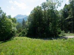 Gryon Immo vous propose un joli terrain dans un quartier résidentiel proche des commodités PRIX: 300.--/m2 CHF