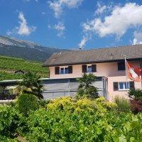 Superbe villa + 2 parcelles de vignes sur les hauteurs de Conthey